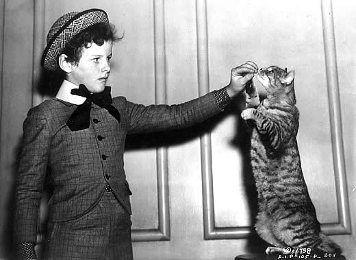 Tommy Kelly and the cat